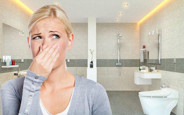 Xử lý mùi hôi nhà vệ sinh tại Hải Phòng
